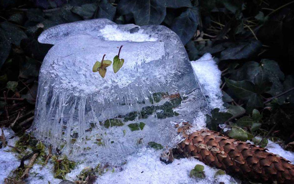 Winterblues ade, oder warum nächstes Jahr alles besser wird!